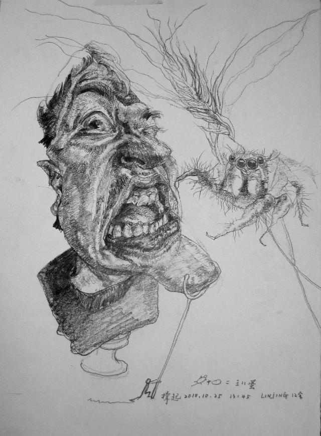 人物表情系列作品之四 林婧 铅笔素描